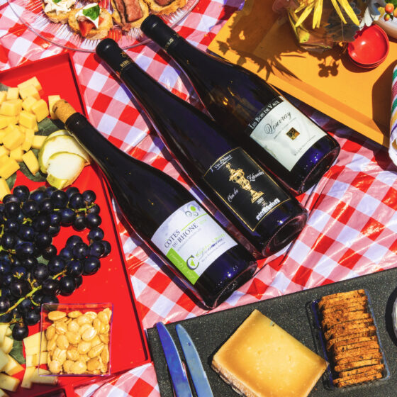 Picnic, Full Spread, Wines, Cheeses, Bread, Olive Oil - Wine4Food