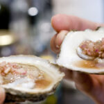 radish mignonette on oysters