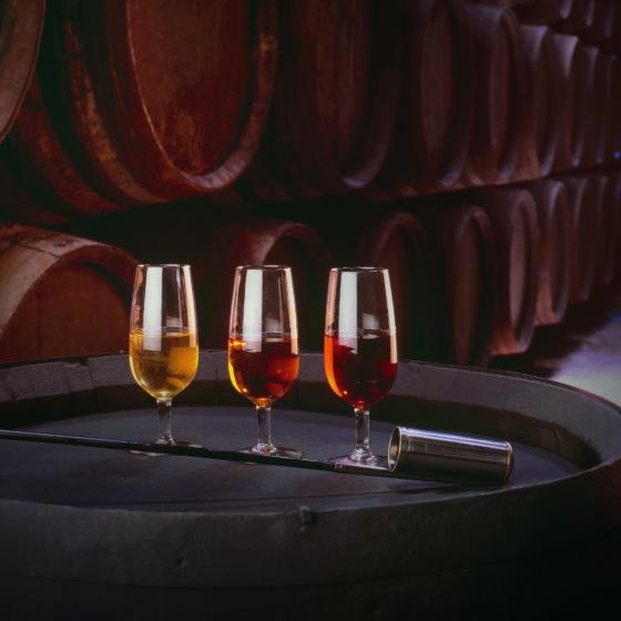 Vinos Jerez Sherry Wines Bodegon vinos y venencia, Sherry styles