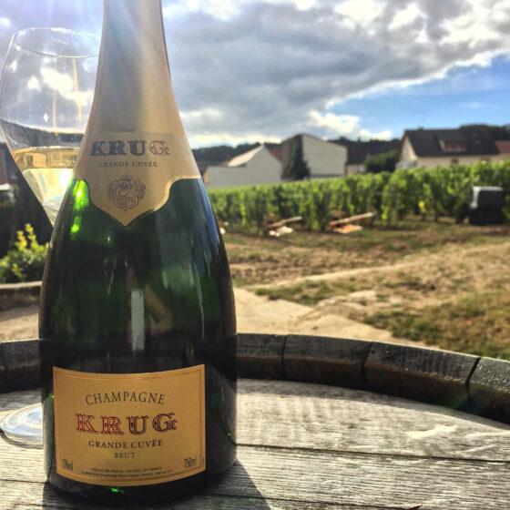 Champagne_Krug_Vineyard